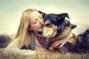 Pros and Cons of Dog Sitting with Rover